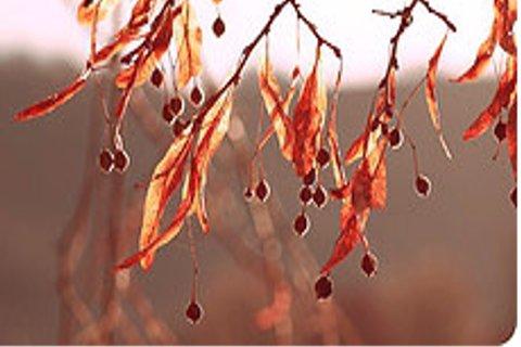 Herbstmode für Männer